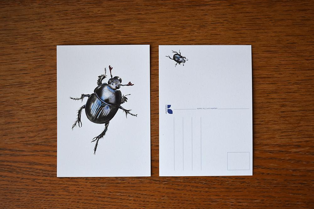 Spa travel illustrations 06 postcard - studio katipeifer
