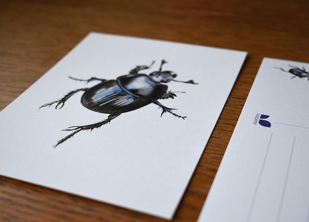 Spa travel illustrations 07 postcard detail - studio katipeifer