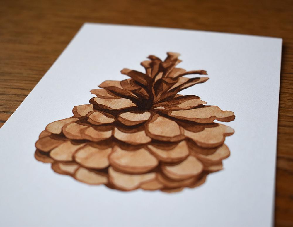 Pine cone 02 - studio katipeifer