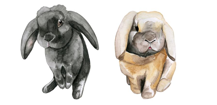 Wedding card J&L 06 bunnies - studio katipeifer